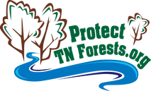Protect TN Trees logo